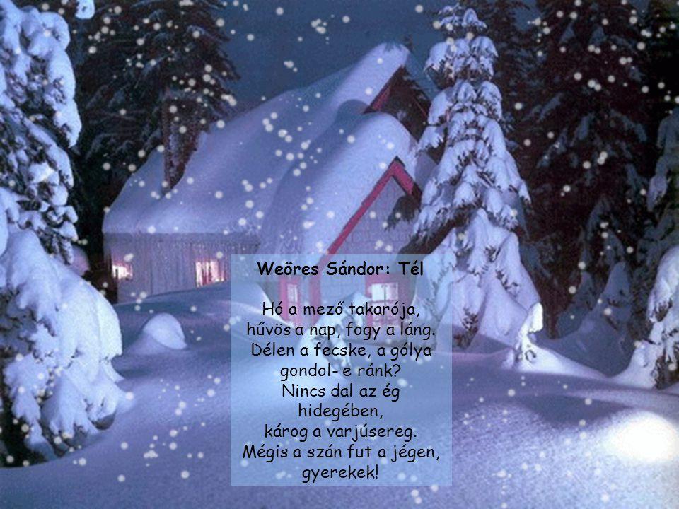 Weöres Sándor: Tél Hó a mező takarója, hűvös a nap, fogy a láng. Délen a fecske, a gólya gondol- e ránk? Nincs dal az ég hidegében, károg a varjúsereg
