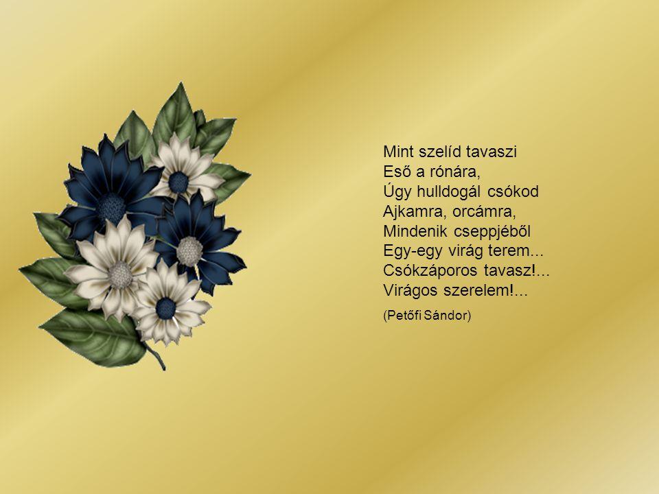 Mint szelíd tavaszi Eső a rónára, Úgy hulldogál csókod Ajkamra, orcámra, Mindenik cseppjéből Egy-egy virág terem...
