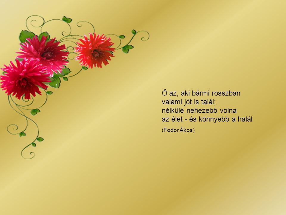 A szerelem az adni tudás képessége nélkül olyan, mint egy kert, amelyben nincs virág. Én minél többet szerettem volna adni neki magamból. Nagyon szere