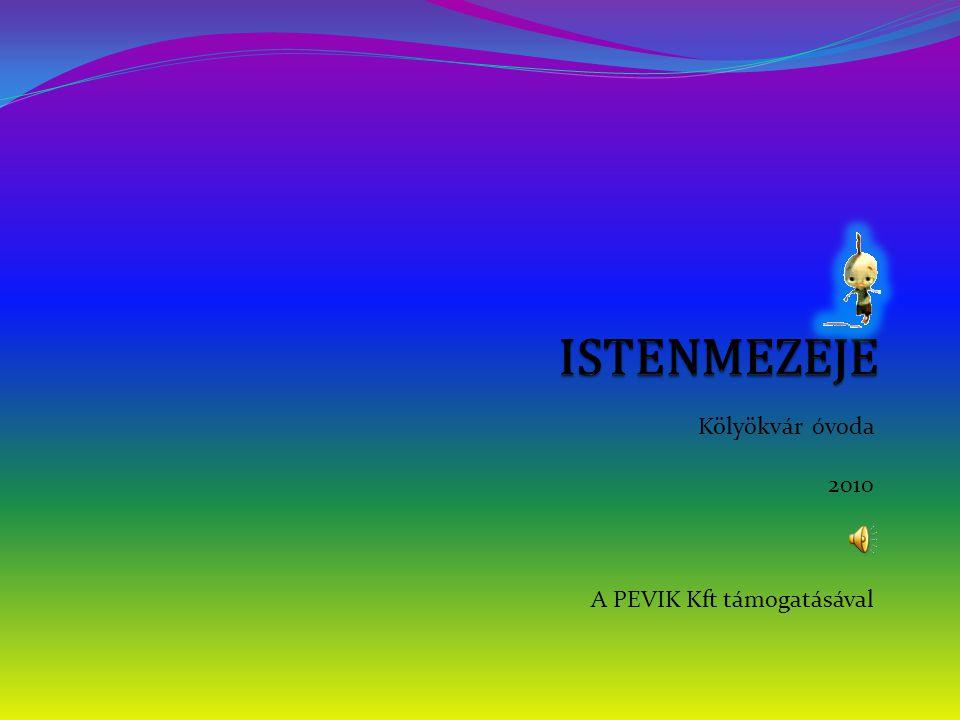 Kölyökvár óvoda 2010 A PEVIK Kft támogatásával