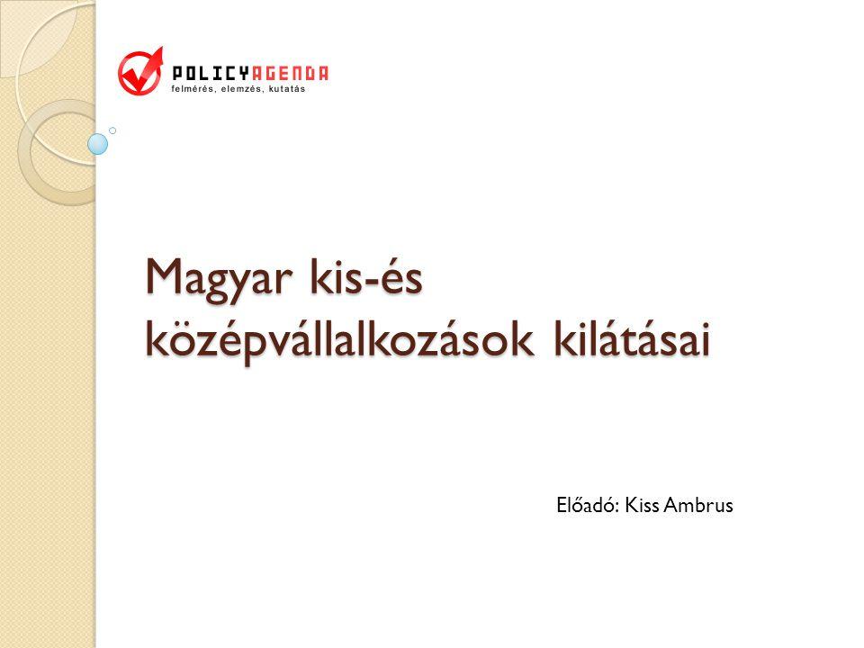 Magyar kis-és középvállalkozások kilátásai Előadó: Kiss Ambrus