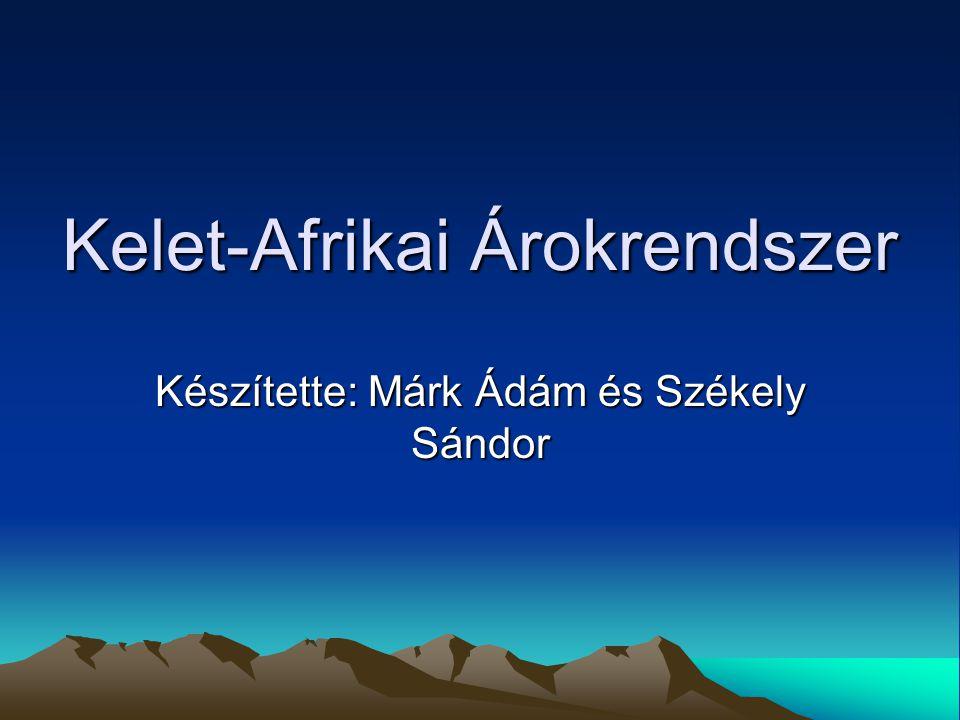 Kelet-Afrikai Árokrendszer Készítette: Márk Ádám és Székely Sándor