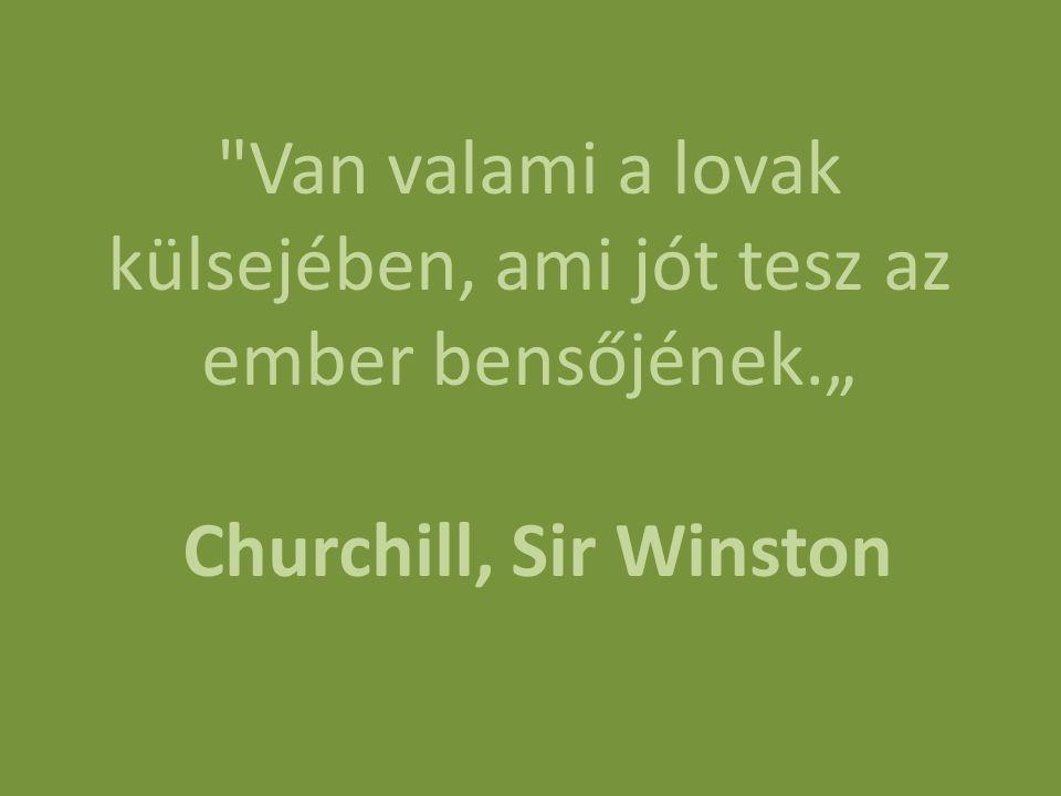 """Van valami a lovak külsejében, ami jót tesz az ember bensőjének."""" Churchill, Sir Winston"""