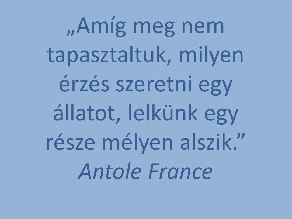 """""""Amíg meg nem tapasztaltuk, milyen érzés szeretni egy állatot, lelkünk egy része mélyen alszik. Antole France"""