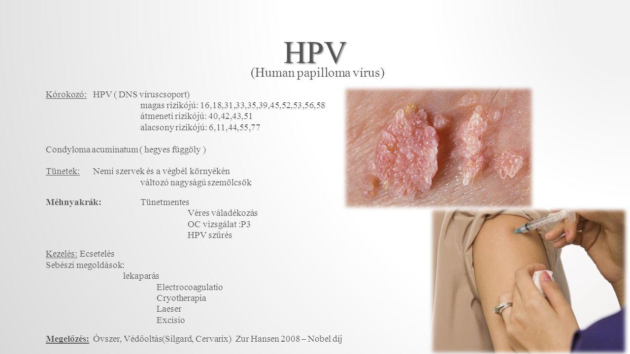 HPV (Human papilloma vírus) Kórokozó:HPV ( DNS víruscsoport) magas rizikójú: 16,18,31,33,35,39,45,52,53,56,58 átmeneti rizikójú: 40,42,43,51 alacsony rizikójú: 6,11,44,55,77 Condyloma acuminatum ( hegyes függöly ) Tünetek:Nemi szervek és a végbél környékén változó nagyságú szemölcsök Méhnyakrák:Tünetmentes Véres váladékozás OC vizsgálat :P3 HPV szűrés Kezelés: Ecsetelés Sebészi megoldások: lekaparás Electrocoagulatio Cryotherapia Laeser Excisio Megelőzés: Óvszer, Védőoltás(Silgard, Cervarix) Zur Hansen 2008 – Nobel díj