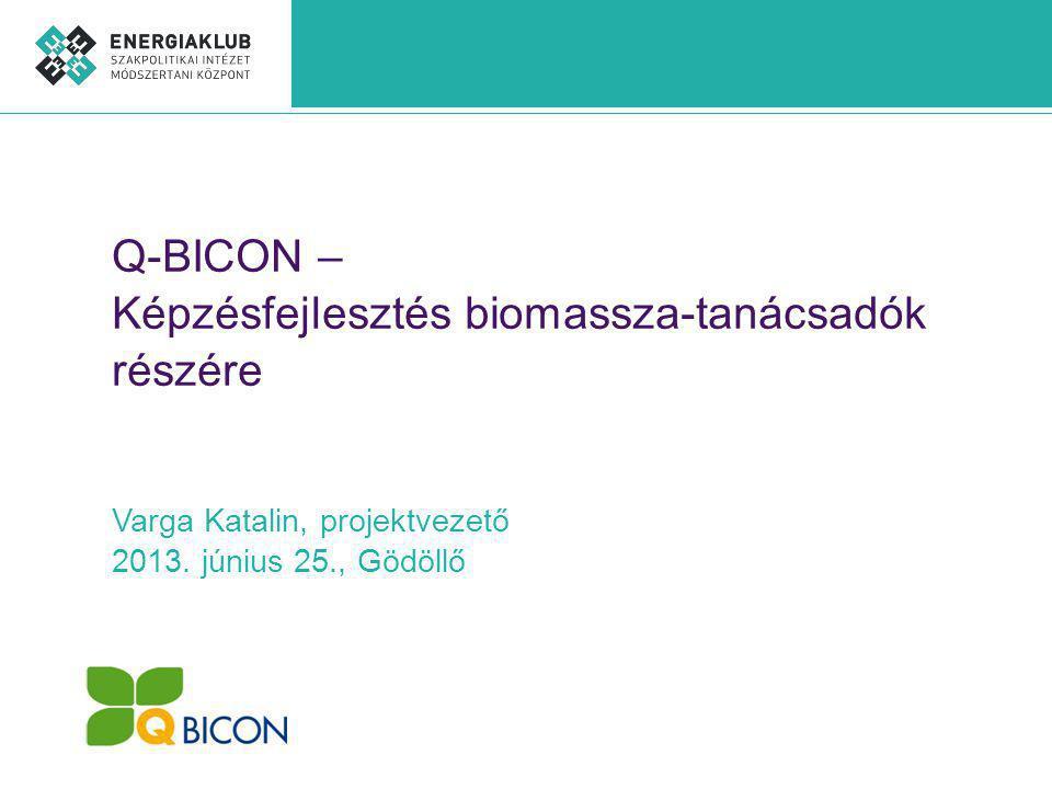 Q-BICON – Képzésfejlesztés biomassza-tanácsadók részére Varga Katalin, projektvezető 2013.