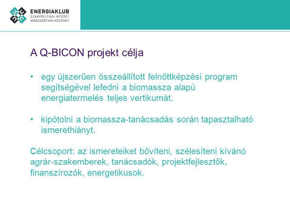 A Q-BICON projekt célja egy újszerűen összeállított felnőttképzési program segítségével lefedni a biomassza alapú energiatermelés teljes vertikumát.
