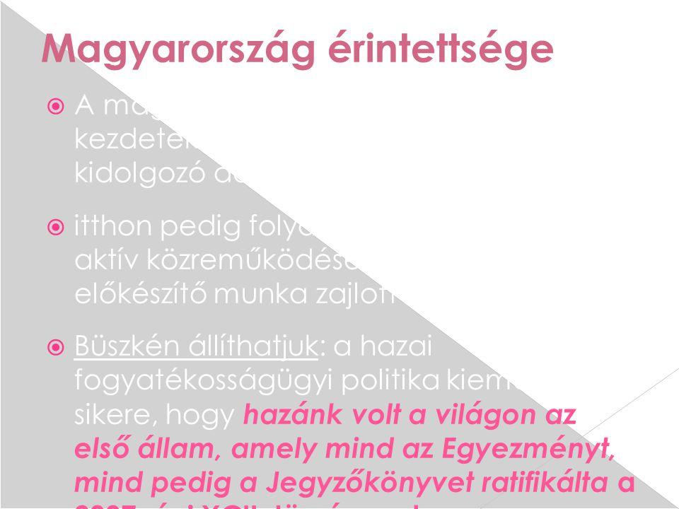 Magyarország érintettsége  A magyar kormány képviselője már a kezdetektől részt vett a szöveget kidolgozó ad-hoc bizottság munkájában  itthon pedig folyamatos, az érintettek aktív közreműködésével történő szakmai előkészítő munka zajlott  Büszkén állíthatjuk: a hazai fogyatékosságügyi politika kiemelkedő sikere, hogy hazánk volt a világon az első állam, amely mind az Egyezményt, mind pedig a Jegyzőkönyvet ratifikálta a 2007.