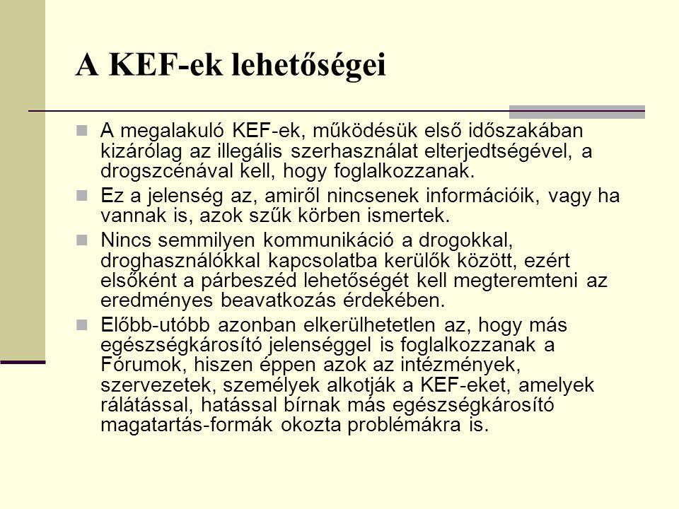 A KEF-ek lehetőségei A megalakuló KEF-ek, működésük első időszakában kizárólag az illegális szerhasználat elterjedtségével, a drogszcénával kell, hogy foglalkozzanak.