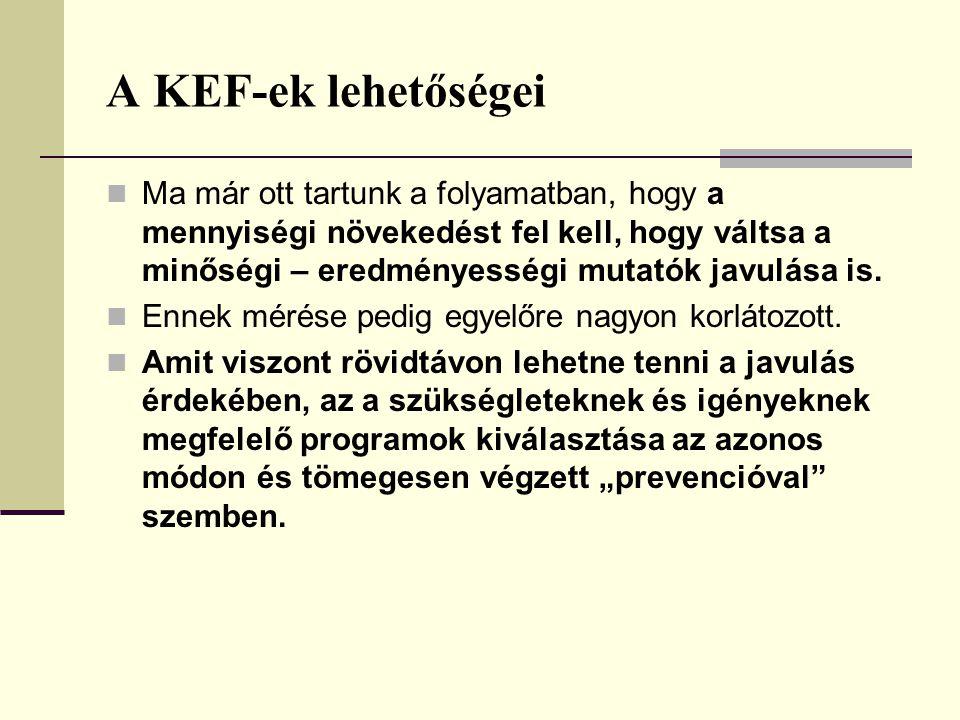 A KEF-ek lehetőségei Ma már ott tartunk a folyamatban, hogy a mennyiségi növekedést fel kell, hogy váltsa a minőségi – eredményességi mutatók javulása is.
