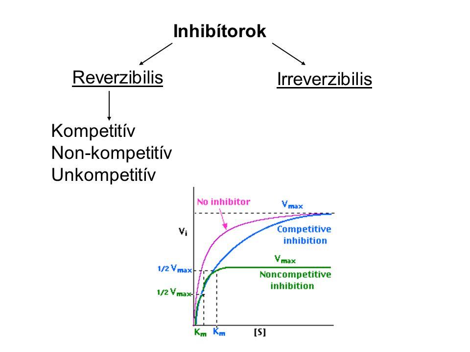 Inhibítorok Reverzibilis Irreverzibilis Kompetitív Non-kompetitív Unkompetitív