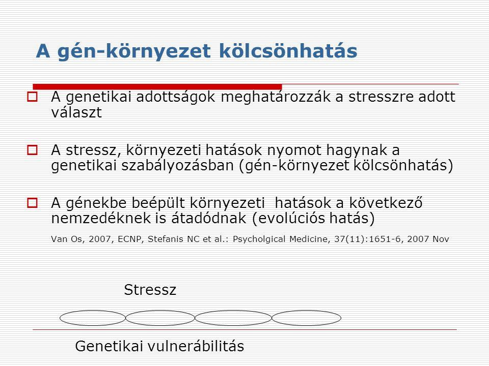 A gén-környezet kölcsönhatás  A genetikai adottságok meghatározzák a stresszre adott választ  A stressz, környezeti hatások nyomot hagynak a genetikai szabályozásban (gén-környezet kölcsönhatás)  A génekbe beépült környezeti hatások a következő nemzedéknek is átadódnak (evolúciós hatás) Van Os, 2007, ECNP, Stefanis NC et al.: Psycholgical Medicine, 37(11):1651-6, 2007 Nov Stressz Genetikai vulnerábilitás