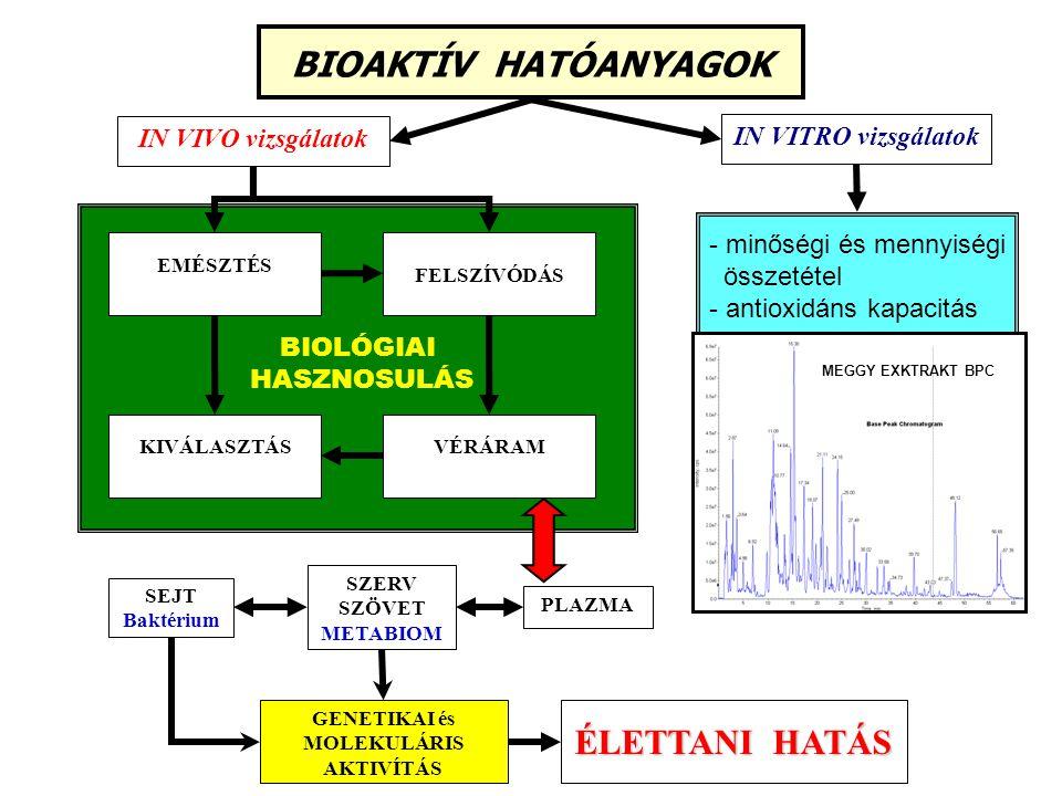 BIOAKTÍV HATÓANYAGOK IN VITRO vizsgálatok IN VIVO vizsgálatok BIOLÓGIAI HASZNOSULÁS EMÉSZTÉS FELSZÍVÓDÁS KIVÁLASZTÁSVÉRÁRAM SEJT Baktérium ÉLETTANI HA