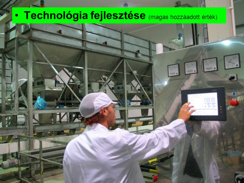 Technológia fejlesztése (magas hozzáadott érték)