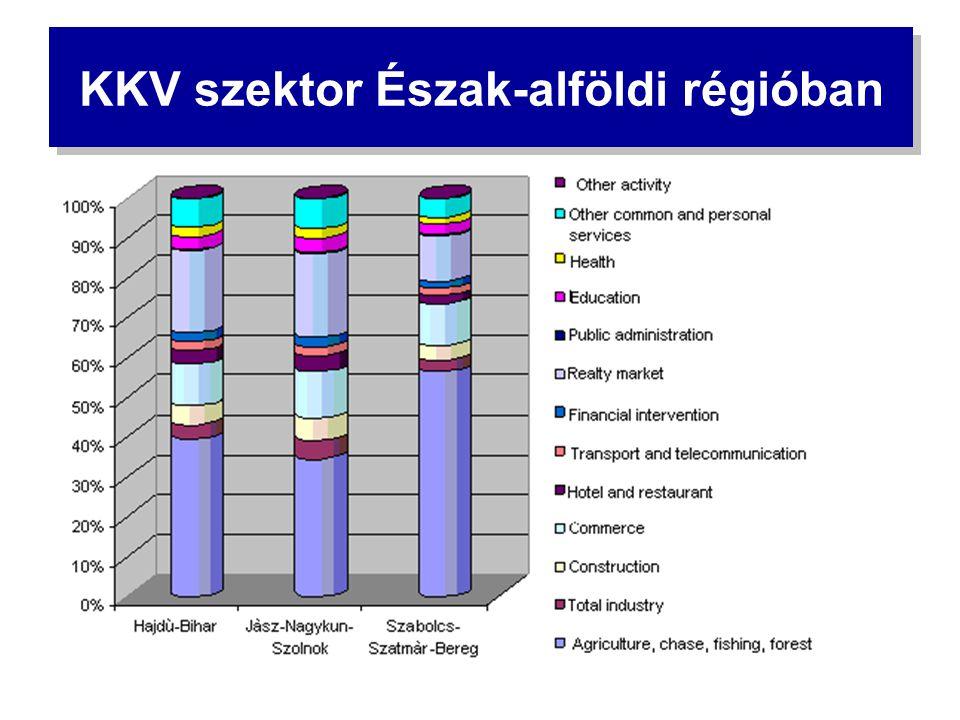 KKV szektor Észak-alföldi régióban