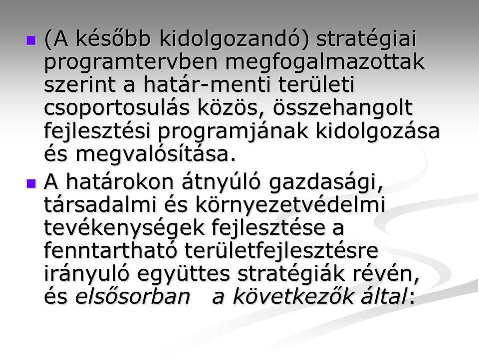 (A később kidolgozandó) stratégiai programtervben megfogalmazottak szerint a határ-menti területi csoportosulás közös, összehangolt fejlesztési programjának kidolgozása és megvalósítása.