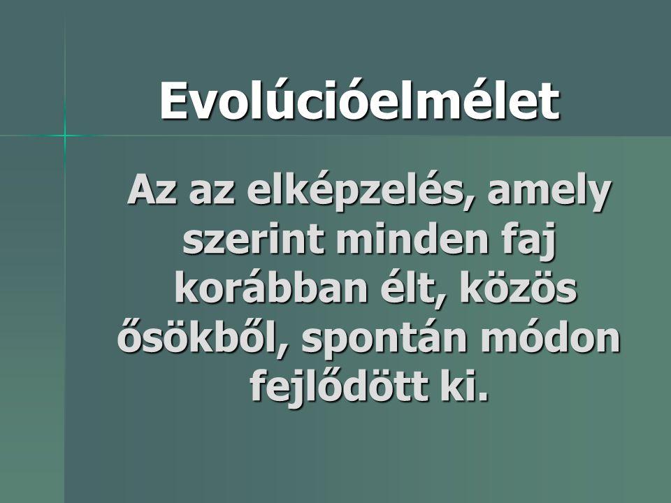 Az az elképzelés, amely szerint minden faj korábban élt, közös ősökből, spontán módon fejlődött ki. Evolúcióelmélet