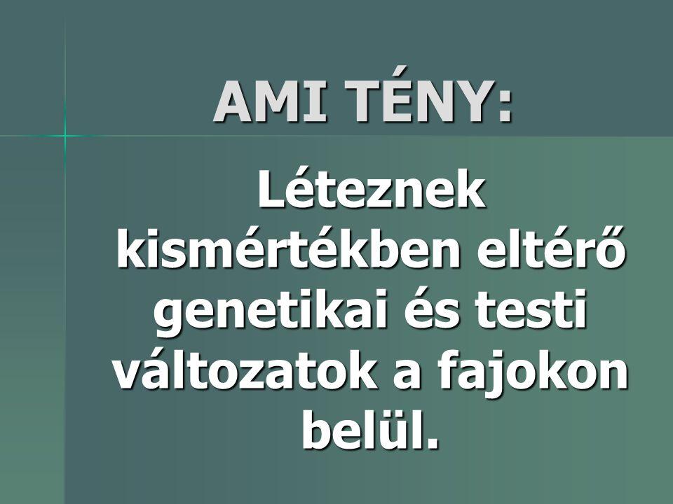 AMI TÉNY: Léteznek kismértékben eltérő genetikai és testi változatok a fajokon belül.