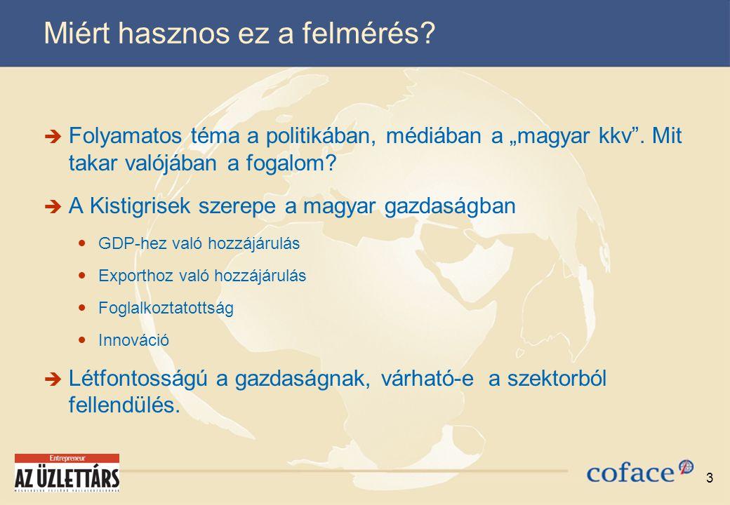 """3 Miért hasznos ez a felmérés.  Folyamatos téma a politikában, médiában a """"magyar kkv ."""