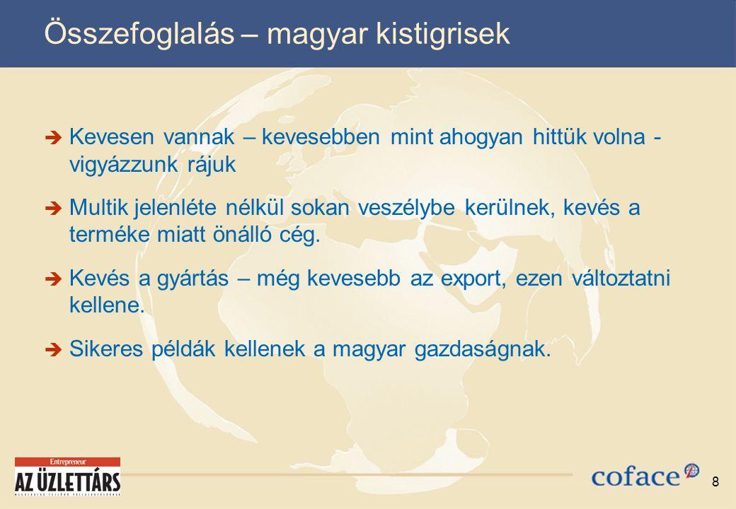 8 Összefoglalás – magyar kistigrisek  Kevesen vannak – kevesebben mint ahogyan hittük volna - vigyázzunk rájuk  Multik jelenléte nélkül sokan veszélybe kerülnek, kevés a terméke miatt önálló cég.