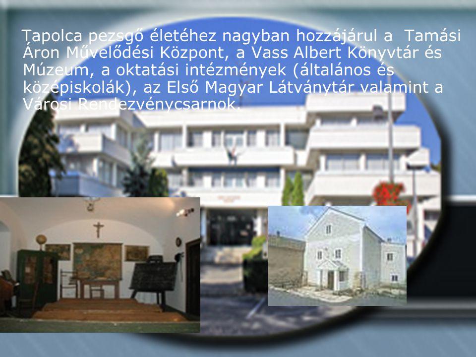 Tapolca pezsgő életéhez nagyban hozzájárul a Tamási Áron Művelődési Központ, a Vass Albert Könyvtár és Múzeum, a oktatási intézmények (általános és középiskolák), az Első Magyar Látványtár valamint a Városi Rendezvénycsarnok.
