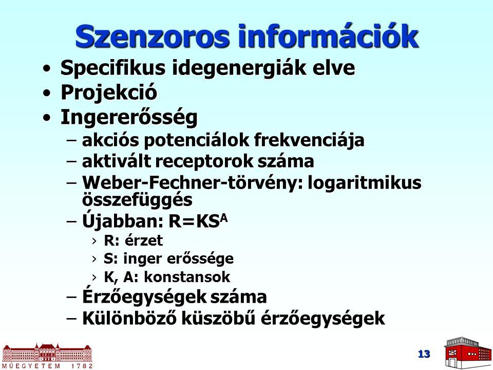 Szenzoros információk Specifikus idegenergiák elveSpecifikus idegenergiák elve ProjekcióProjekció IngererősségIngererősség –akciós potenciálok frekven