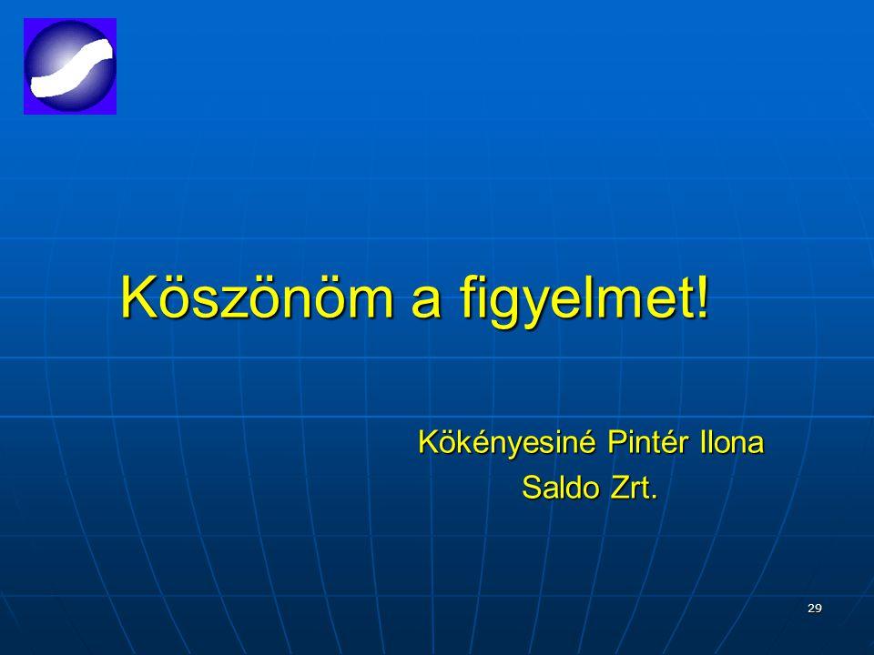 29 Köszönöm a figyelmet! Kökényesiné Pintér Ilona Saldo Zrt.