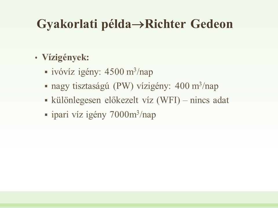 Gyakorlati példa  Richter Gedeon Vízigények:  ivóvíz igény: 4500 m 3 /nap  nagy tisztaságú (PW) vízigény: 400 m 3 /nap  különlegesen előkezelt víz
