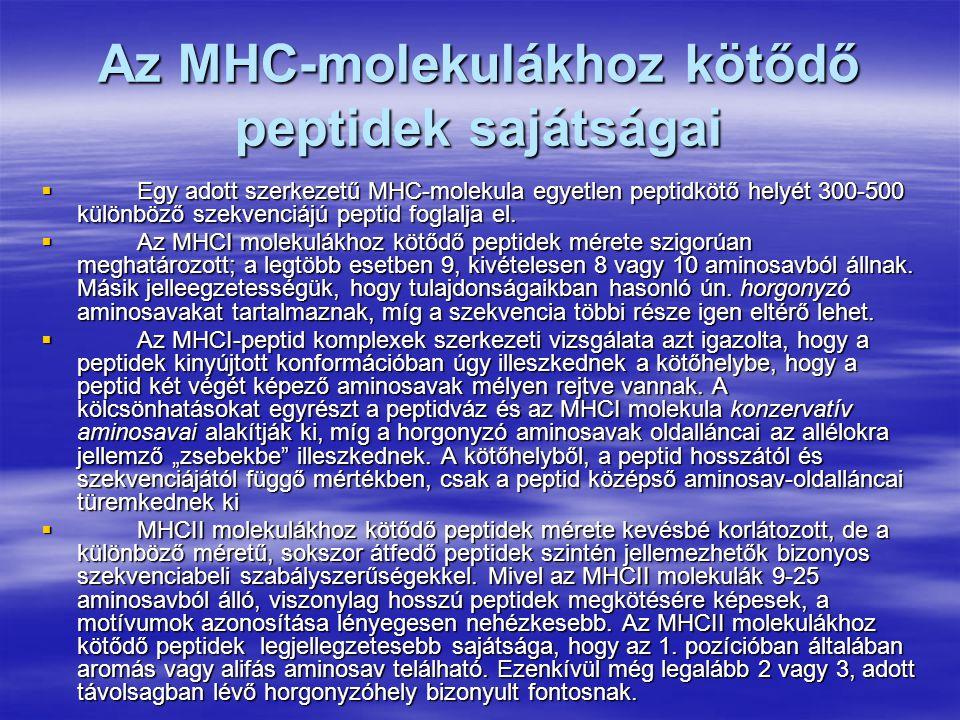 """I.3 Az MHC molekulák peptidkötő funkciójának szerkezeti alapja  Az MHCI és MHCII molekulák térszerkezetének tisztázása az alábbi fontos információkat szolgáltatta:  a peptidek megkötéséért elsősorban a molekula felszínén elhelyezkedő peptidkötő hely """"zsebei felelősek  a molekula felszíni bemélyedése T-sejtek jelenléte nélkül is tartalmaz peptideket  egy adott aminosavszekvenciával rendelkező MHC-molekula többféle peptid megkötésére képes  az MHC molekula a szervezet saját és nem saját fehérjéiből származó peptidek megkötésére is alkalmas, így nem rendelkezik antigénspecifitással."""
