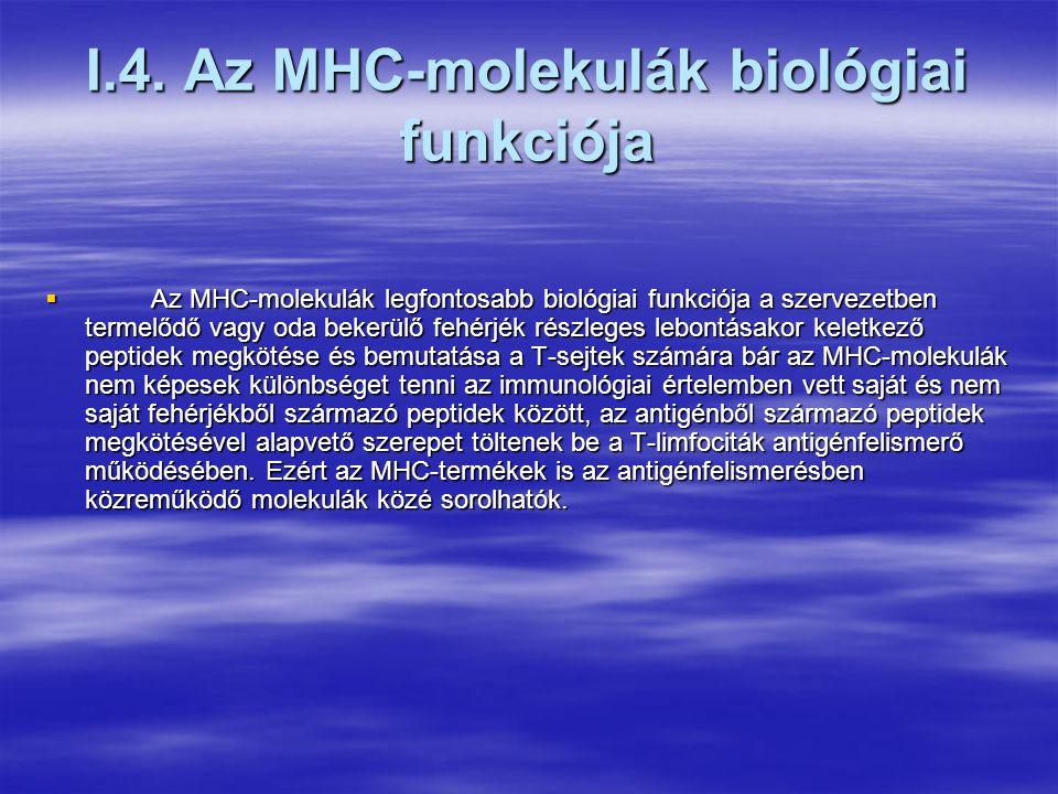 Az MHC-peptid kölcsönhatás jellegzetességei  Az MHC molekulák és a peptidek közötti kölcsönhatás során elsősorban a kötőhelyért való versengésé a meghatározó szerep.