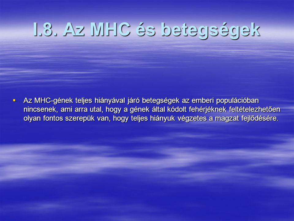 I.7. Az MHC molekulák sejtfelszíni megjelenésének szabályozása  Az MHCI és MHCII gének megjelenése az egyedfejlődés során és a kifejlett szövetekben