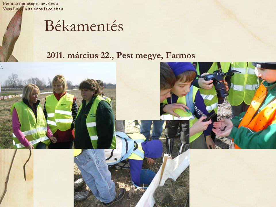 Békamentés 2011. március 22., Pest megye, Farmos Fenntarthatóságra nevelés a Vass Lajos Általános Iskolában