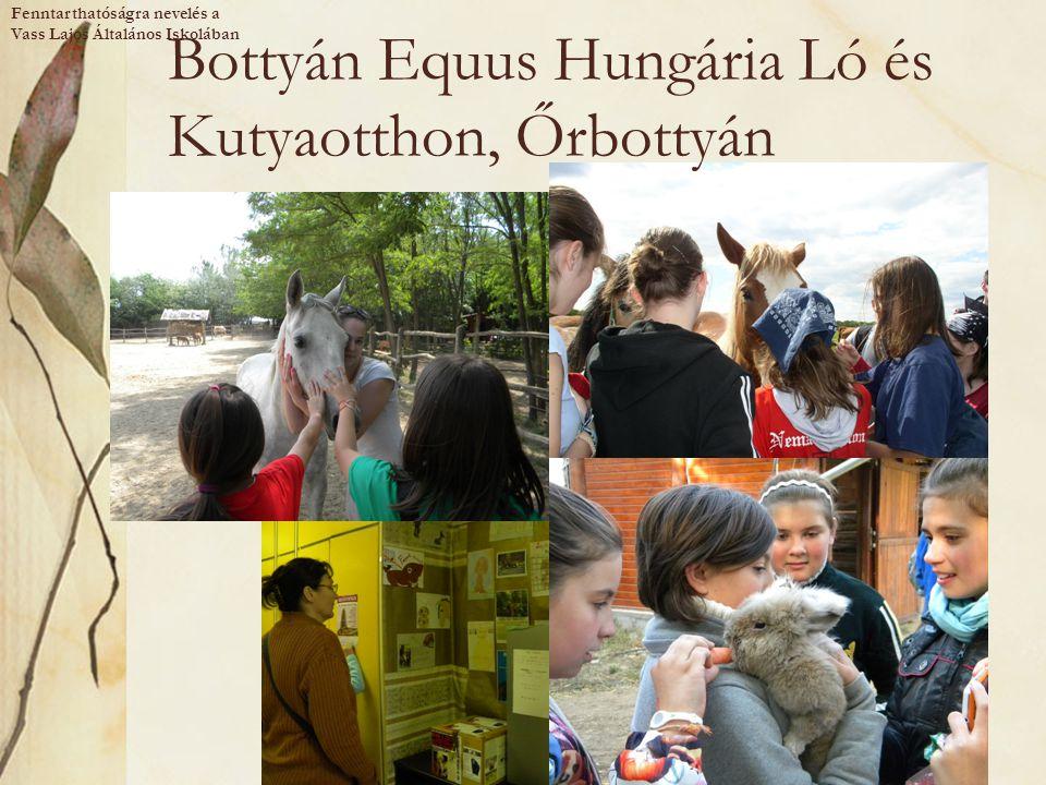 Bottyán Equus Hungária Ló és Kutyaotthon, Őrbottyán Fenntarthatóságra nevelés a Vass Lajos Általános Iskolában