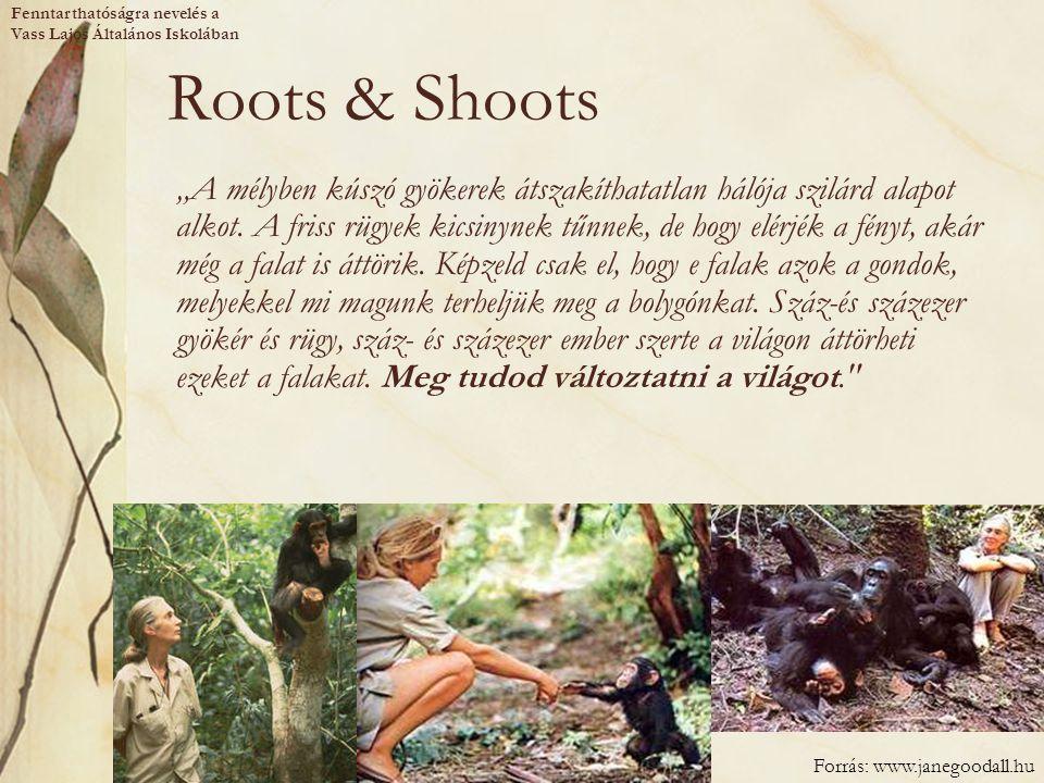 """Roots & Shoots """"A mélyben kúszó gyökerek átszakíthatatlan hálója szilárd alapot alkot. A friss rügyek kicsinynek tűnnek, de hogy elérjék a fényt, akár"""