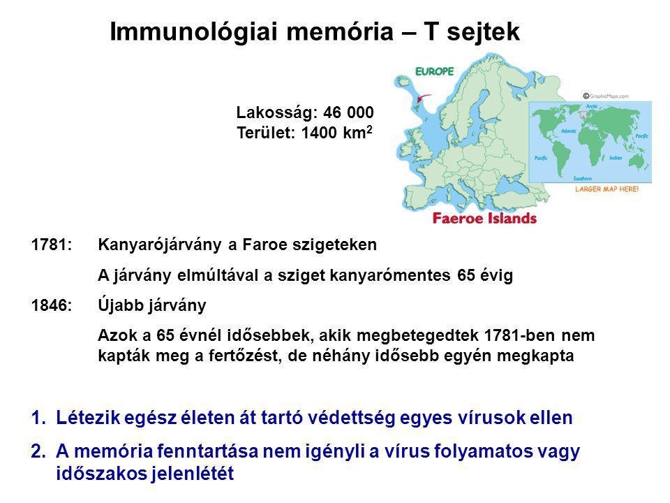 1781:Kanyarójárvány a Faroe szigeteken A járvány elmúltával a sziget kanyarómentes 65 évig 1846: Újabb járvány Azok a 65 évnél idősebbek, akik megbetegedtek 1781-ben nem kapták meg a fertőzést, de néhány idősebb egyén megkapta 1.Létezik egész életen át tartó védettség egyes vírusok ellen 2.A memória fenntartása nem igényli a vírus folyamatos vagy időszakos jelenlétét Immunológiai memória – T sejtek Lakosság: 46 000 Terület: 1400 km 2