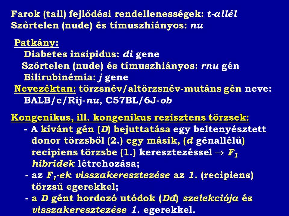 Farok (tail) fejlődési rendellenességek: t-allél Szőrtelen (nude) és tímuszhiányos: nu Patkány: Diabetes insipidus: di gene Szőrtelen (nude) és tímuszhiányos: rnu gén Bilirubinémia: j gene Nevezéktan: törzsnév/altörzsnév-mutáns gén neve: BALB/c/Rij- nu, C57BL/6J- ob Kongenikus, ill.