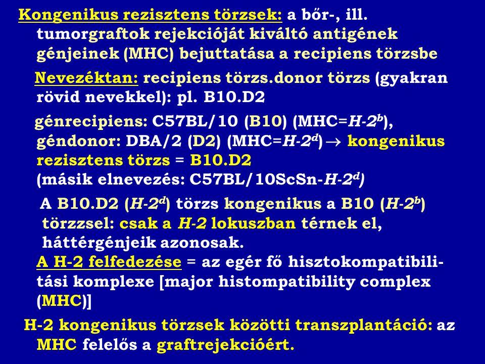 Kongenikus rezisztens törzsek: a bőr-, ill.