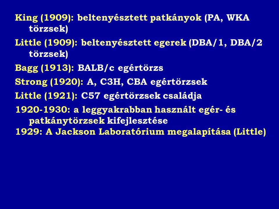 King (1909): beltenyésztett patkányok (PA, WKA törzsek) Little (1909): beltenyésztett egerek (DBA/1, DBA/2 törzsek) Bagg (1913): BALB/c egértörzs Strong (1920): A, C3H, CBA egértörzsek Little (1921): C57 egértörzsek családja 1920-1930: a leggyakrabban használt egér- és patkánytörzsek kifejlesztése 1929: A Jackson Laboratórium megalapítása (Little)