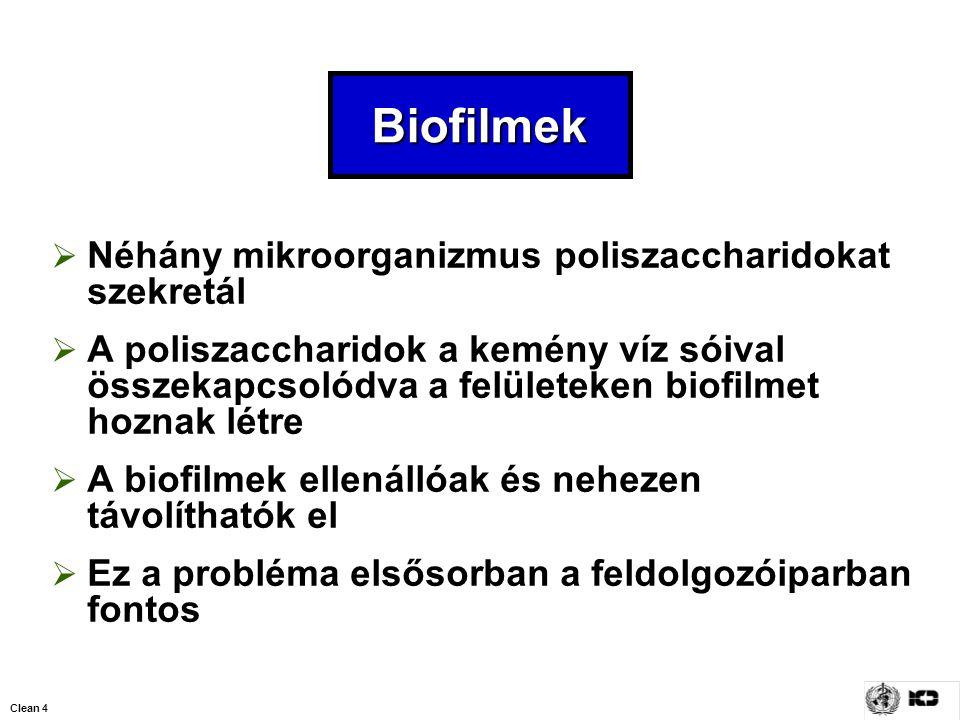 Clean 4 Biofilmek  Néhány mikroorganizmus poliszaccharidokat szekretál  A poliszaccharidok a kemény víz sóival összekapcsolódva a felületeken biofil