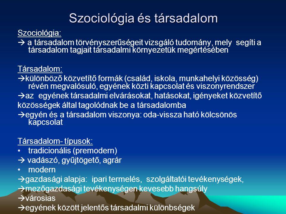 Társadalom Szubkultúra  társadalom többségének kultúrájától eltérő kultúra pl.
