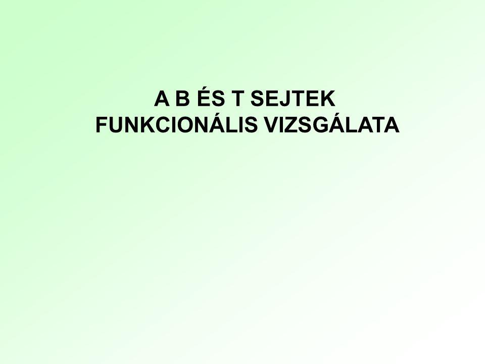 A B ÉS T SEJTEK FUNKCIONÁLIS VIZSGÁLATA