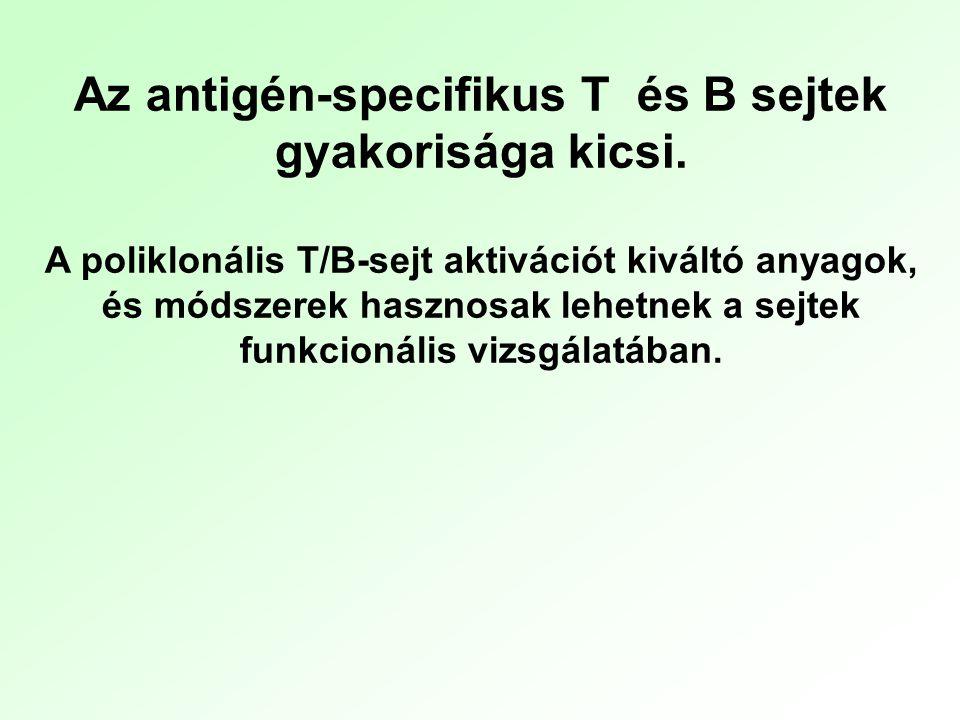 Az antigén-specifikus T és B sejtek gyakorisága kicsi. A poliklonális T/B-sejt aktivációt kiváltó anyagok, és módszerek hasznosak lehetnek a sejtek fu