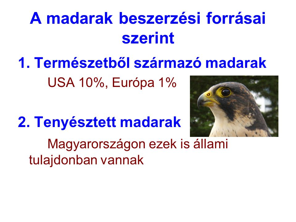 A madarak beszerzési forrásai szerint 1. Természetből származó madarak USA 10%, Európa 1% 2. Tenyésztett madarak Magyarországon ezek is állami tulajdo