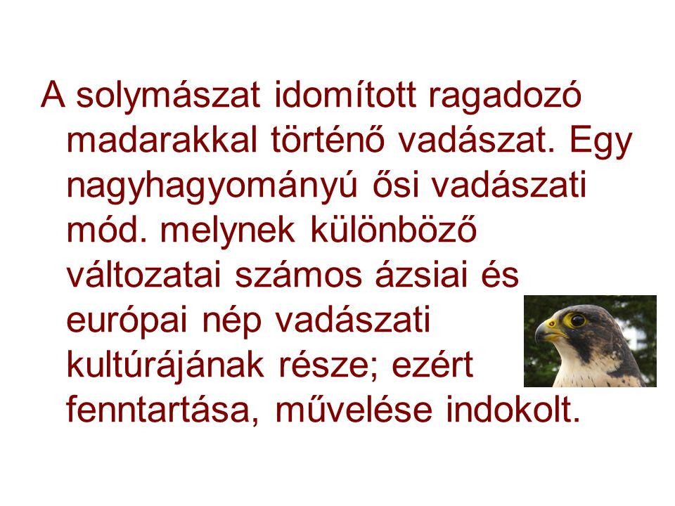 A solymászat idomított ragadozó madarakkal történő vadászat. Egy nagyhagyományú ősi vadászati mód. melynek különböző változatai számos ázsiai és európ