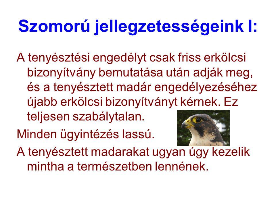 Szomorú jellegzetességeink I: A tenyésztési engedélyt csak friss erkölcsi bizonyítvány bemutatása után adják meg, és a tenyésztett madár engedélyezéséhez újabb erkölcsi bizonyítványt kérnek.