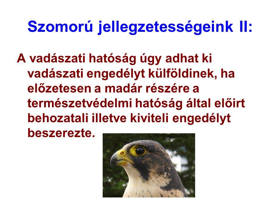 Szomorú jellegzetességeink II: A vadászati hatóság úgy adhat ki vadászati engedélyt külföldinek, ha előzetesen a madár részére a természetvédelmi ható