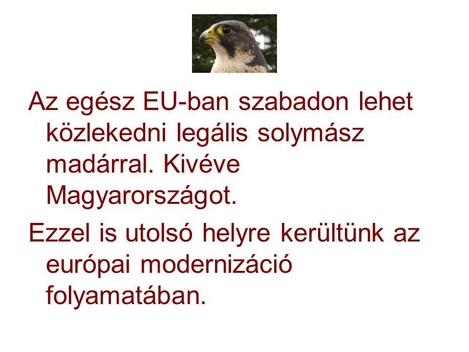 Az egész EU-ban szabadon lehet közlekedni legális solymász madárral. Kivéve Magyarországot. Ezzel is utolsó helyre kerültünk az európai modernizáció f