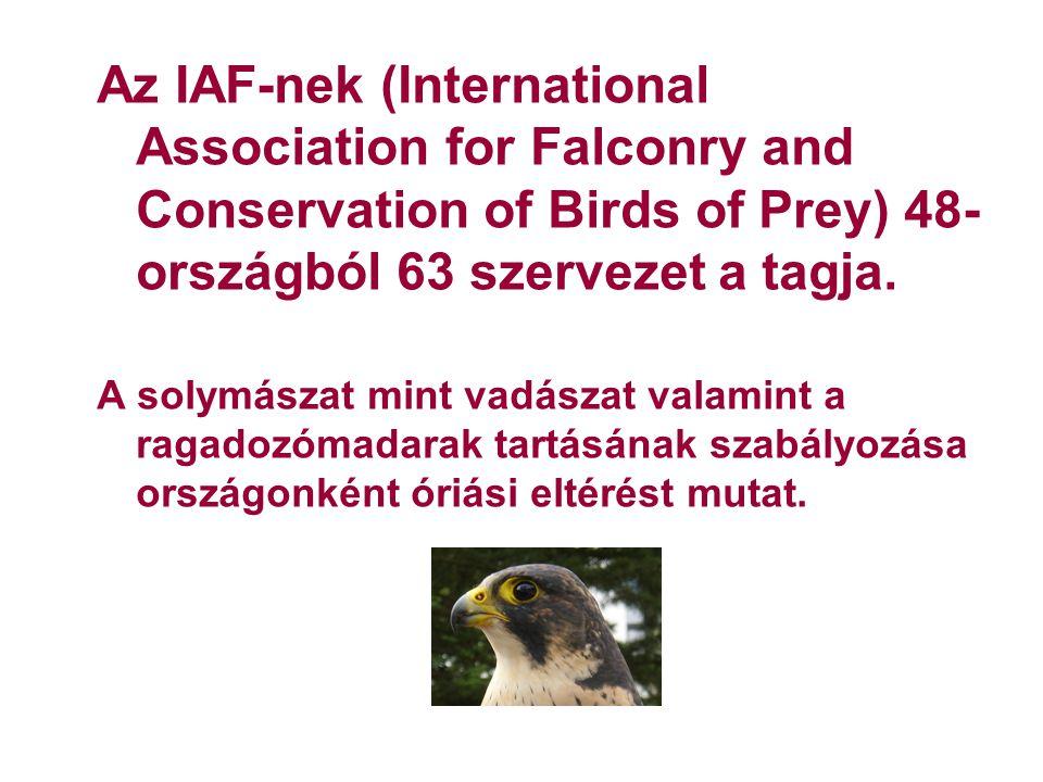 Szomorú jellegzetességeink II: A vadászati hatóság úgy adhat ki vadászati engedélyt külföldinek, ha előzetesen a madár részére a természetvédelmi hatóság által előirt behozatali illetve kiviteli engedélyt beszerezte.