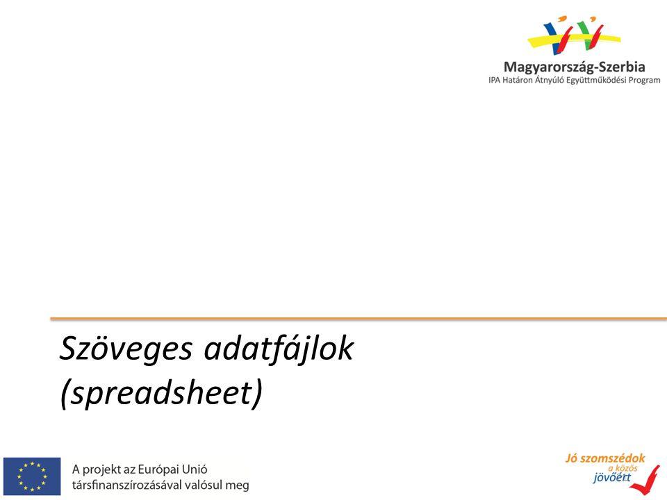 Szöveges adatfájlok (spreadsheet) 21