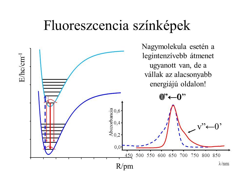 Fluoreszcencia színképek R/pm E/hc/cm -1 0,0 0,2 0,4 0,6 450 500 550 600 650 700 750 800 λ/nm Abszorbancia 850 Nagymolekula esetén a legintenzívebb át